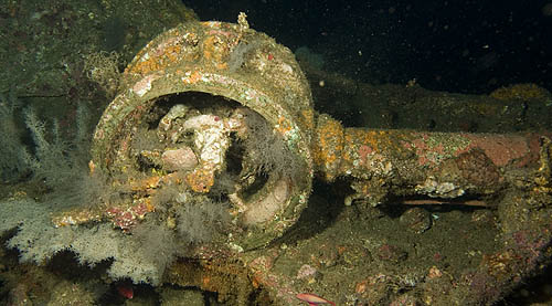 Telegraph from Sophie Rickmers wreck, Palau Weh