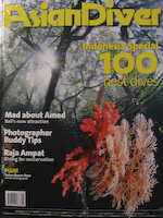 Asian Diver Issue 100