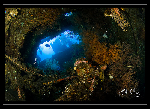 Wreck, Bali