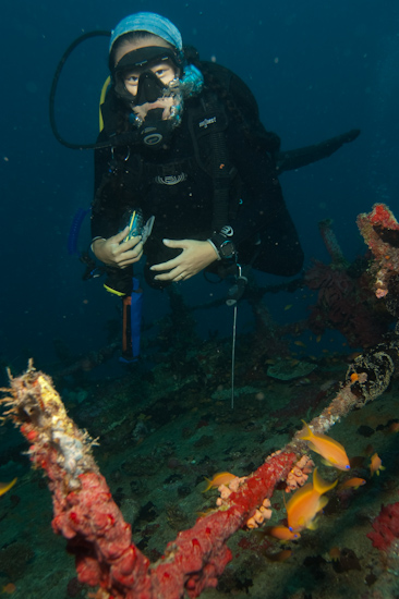 SJ on the Kuda Giri Wreck, Maldives