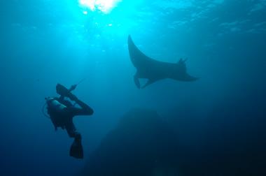 Thailand Diving: Similan Islands Liveaboard, April 2006