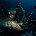 Scuba Diving Kalimantan, Indonesian Borneo