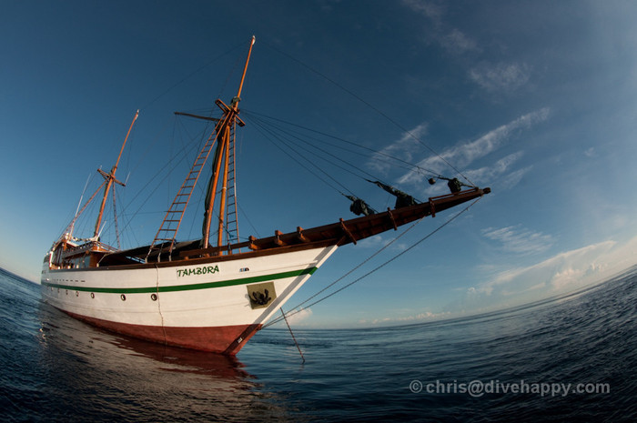Tambora Liveaboard Review