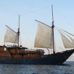 MSY Damai Liveaboard Report